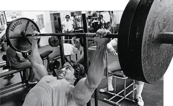 Arnold-inclined-bench